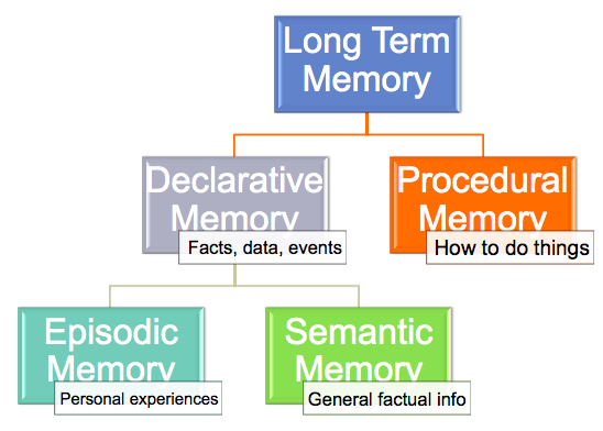 an analysis of episodic memories Source memory tests are considered by some investigators to assess the same  construct underlying tests of episodic memory (eg [2].