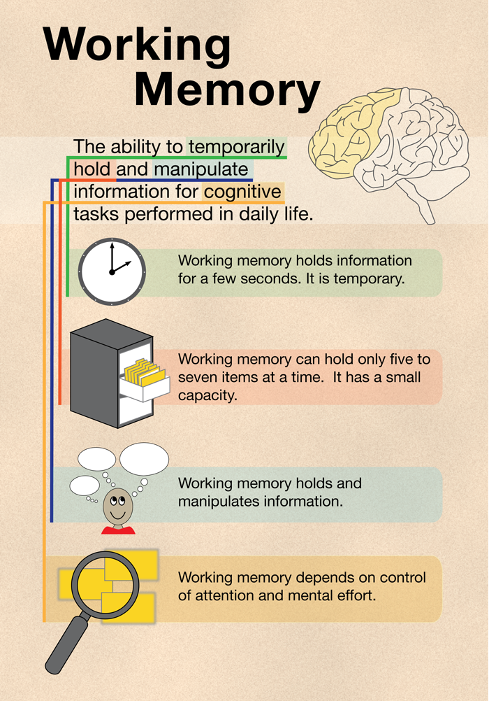 psychology unit 3 & 4 memory and learning pdf